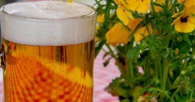 Cerveza en uruguay